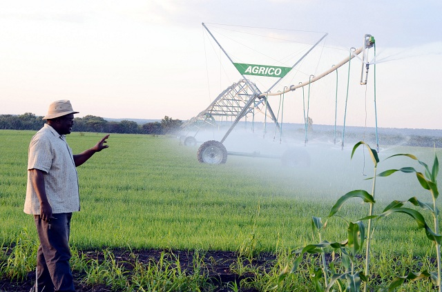 Ndodana Sibanda shows how the center pivot works to water the wheat in Arda Jotsholo recently. (picture by Nkosizile Ndlovu)